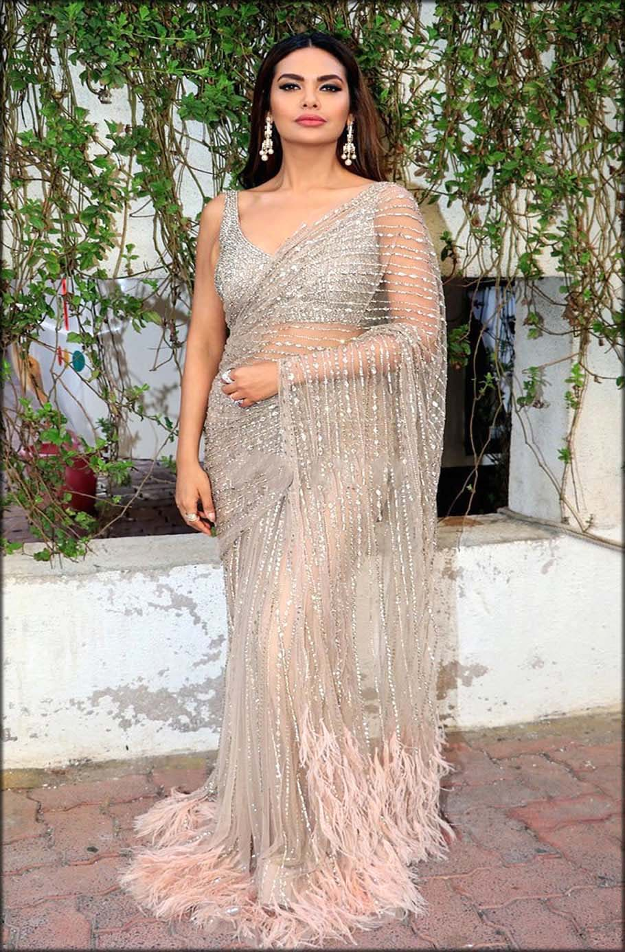 Shimmer Blouse Fancy Saree Designs