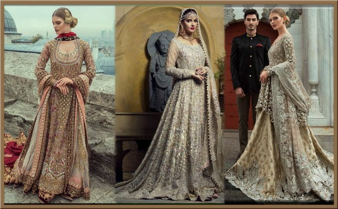 walima dresses collections