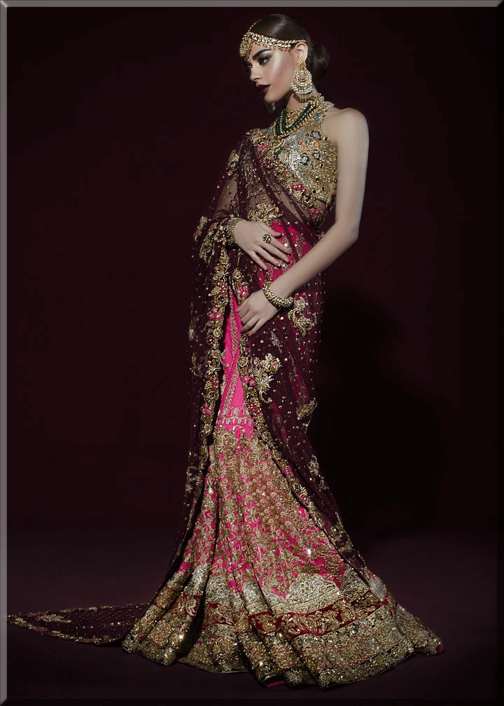 latest saree collections for bride
