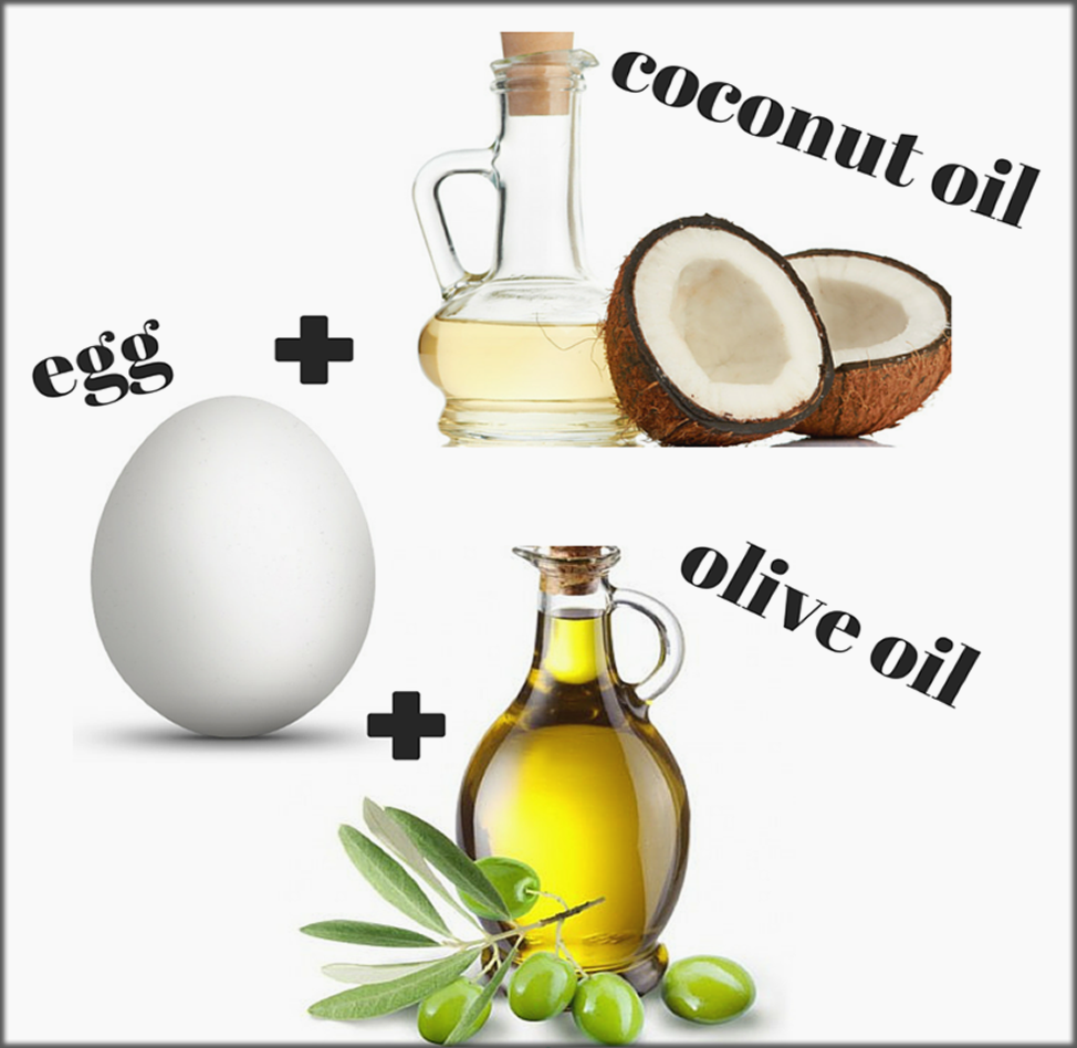 Coconut Milk Egg And Olive Oil