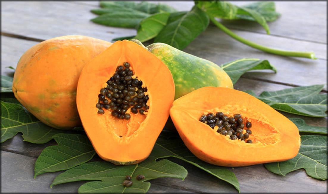 Papaya With Green Leaf