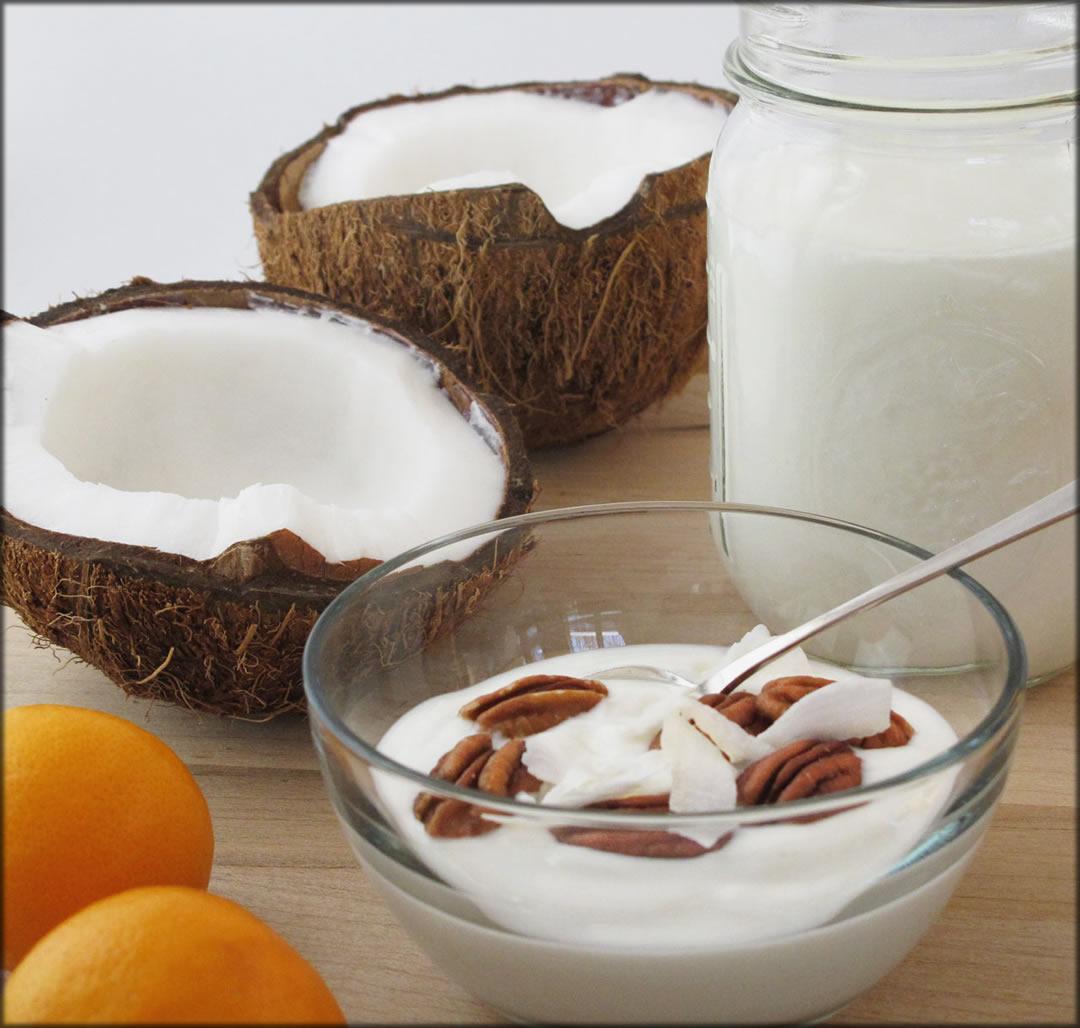 Yogurt And Coconut Milk