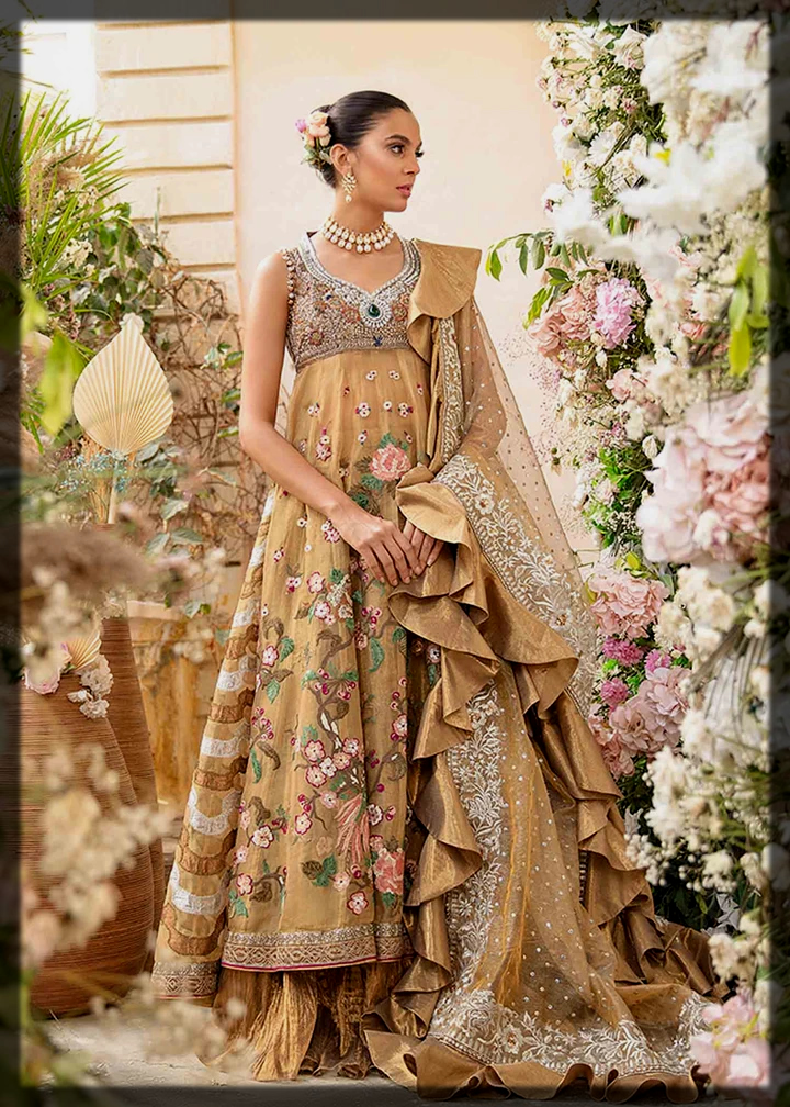 dazzling walima outfit for brides