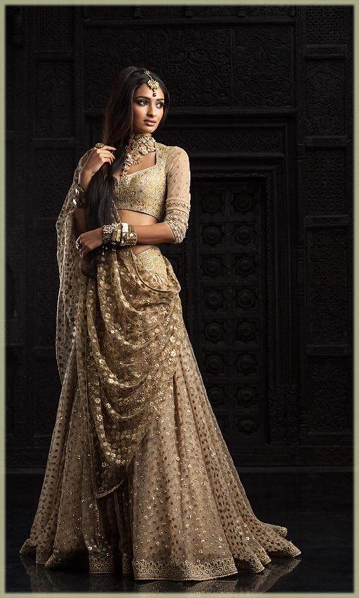 Elegant Indian Bridal Sari