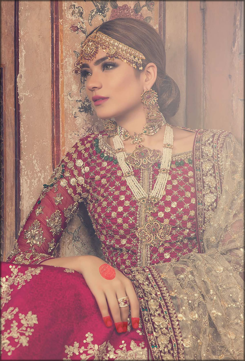 Jall Style Blouse With Embroidered Lehenga