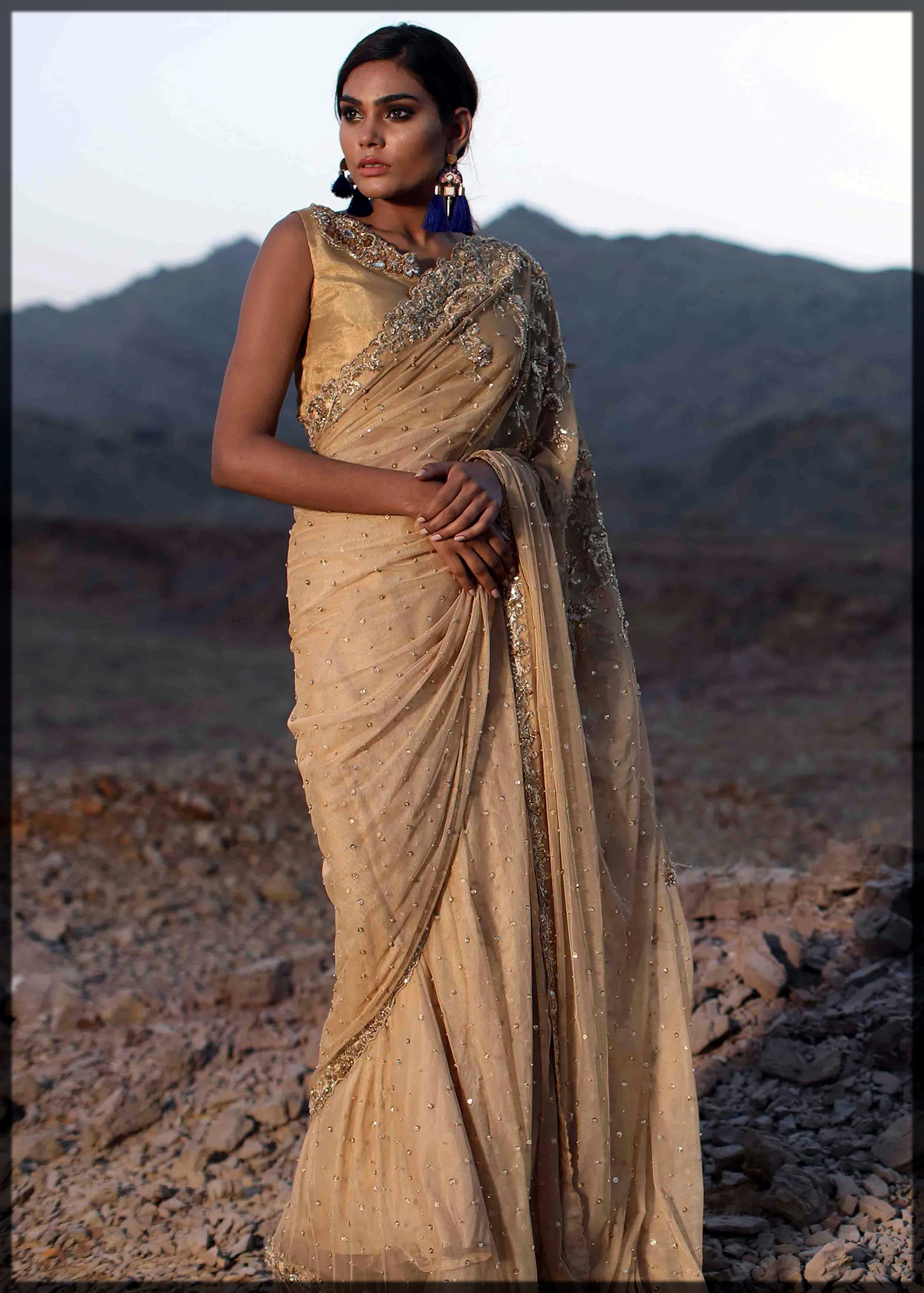 chic Pakistani Saree Designs for women