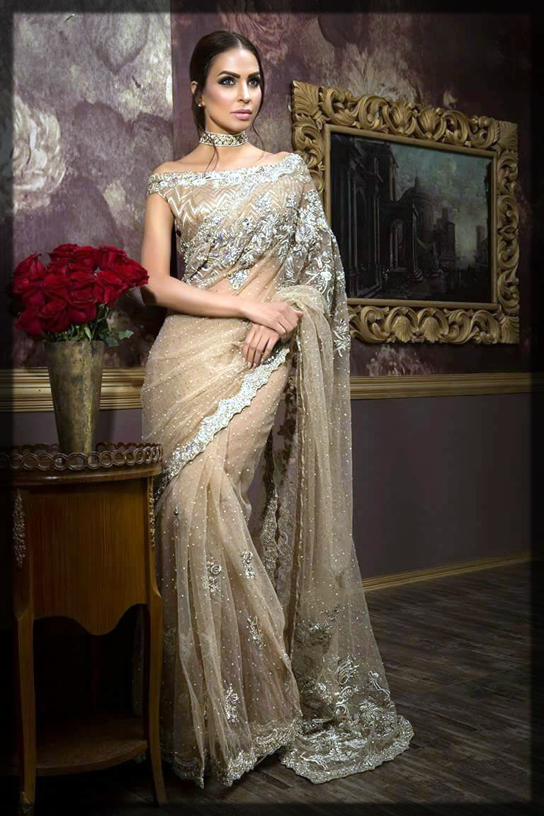 lovely net saree design