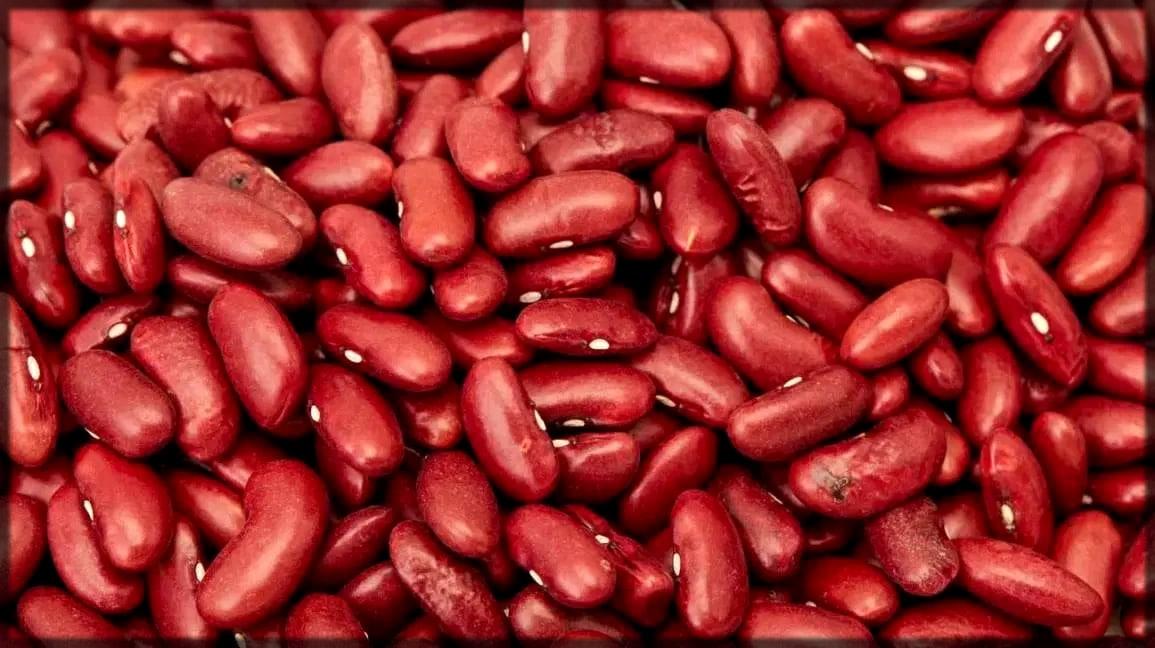 Beans reduce eye bags