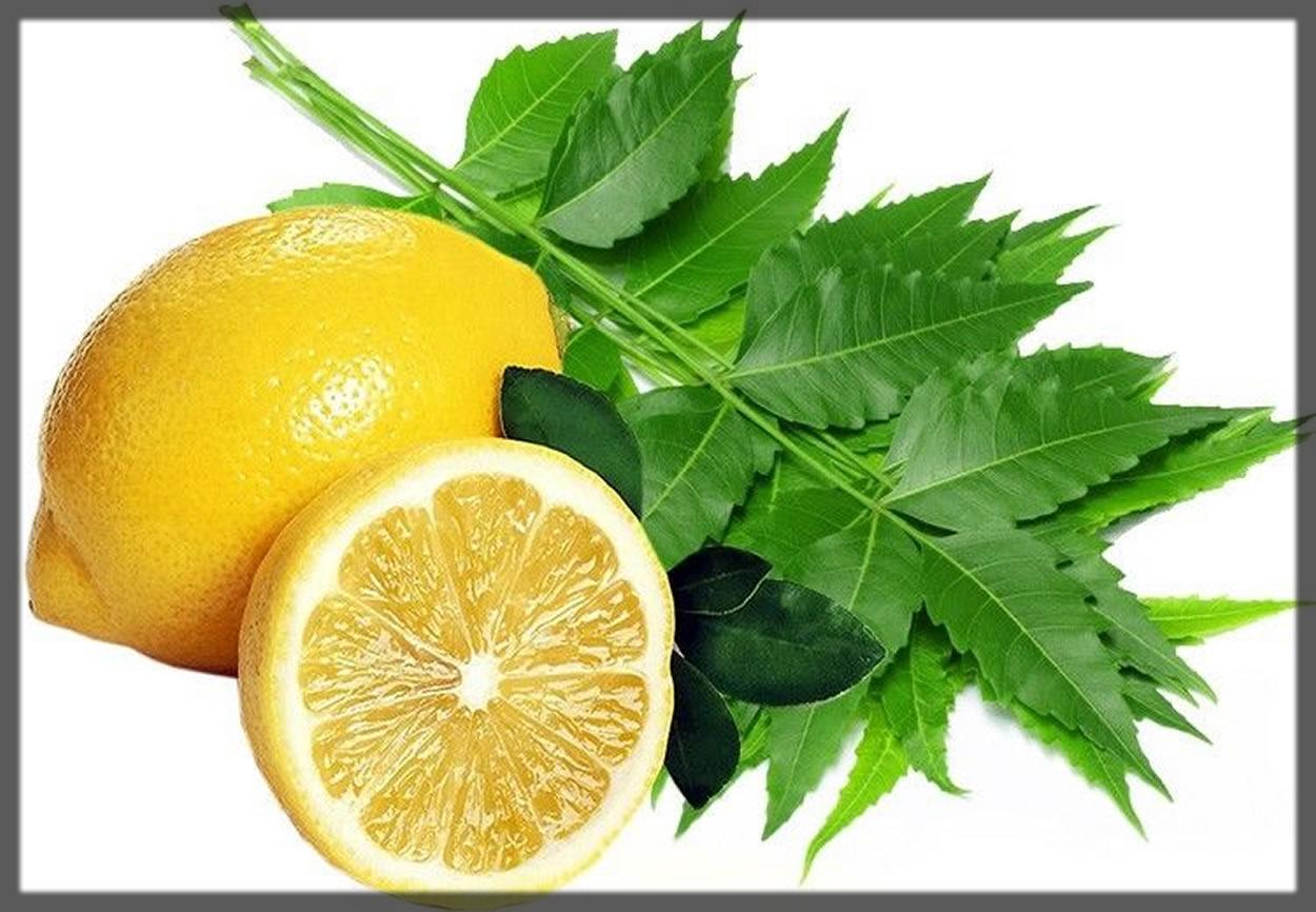 homemade neem and lemon face pack