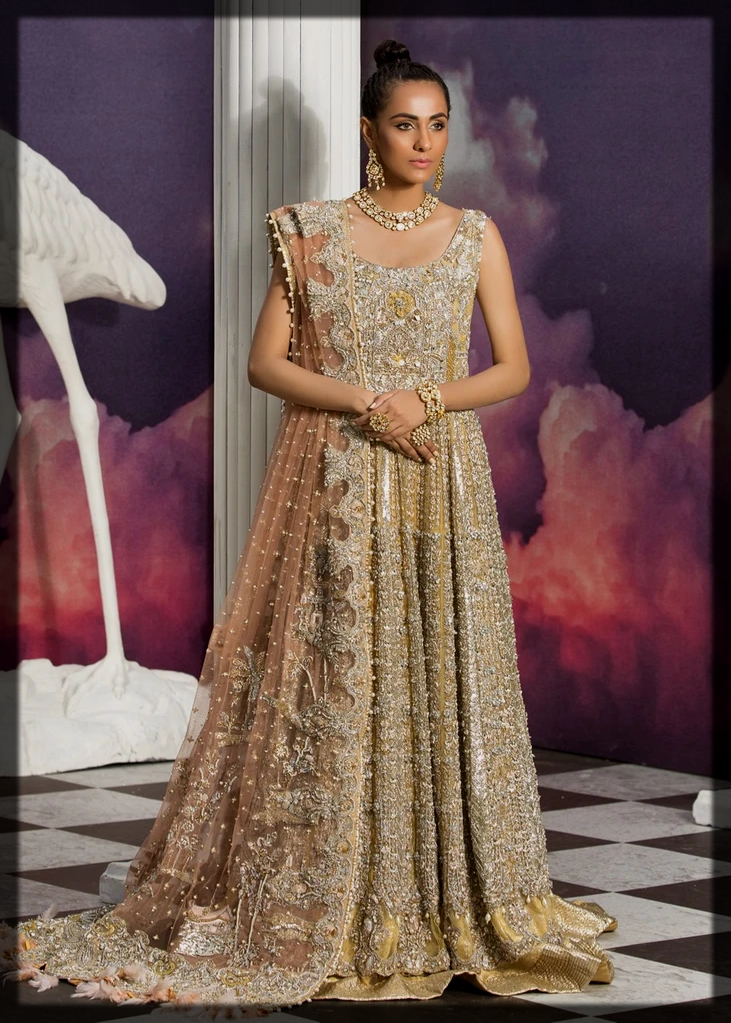 Gold Gown with Tissue Lehenga
