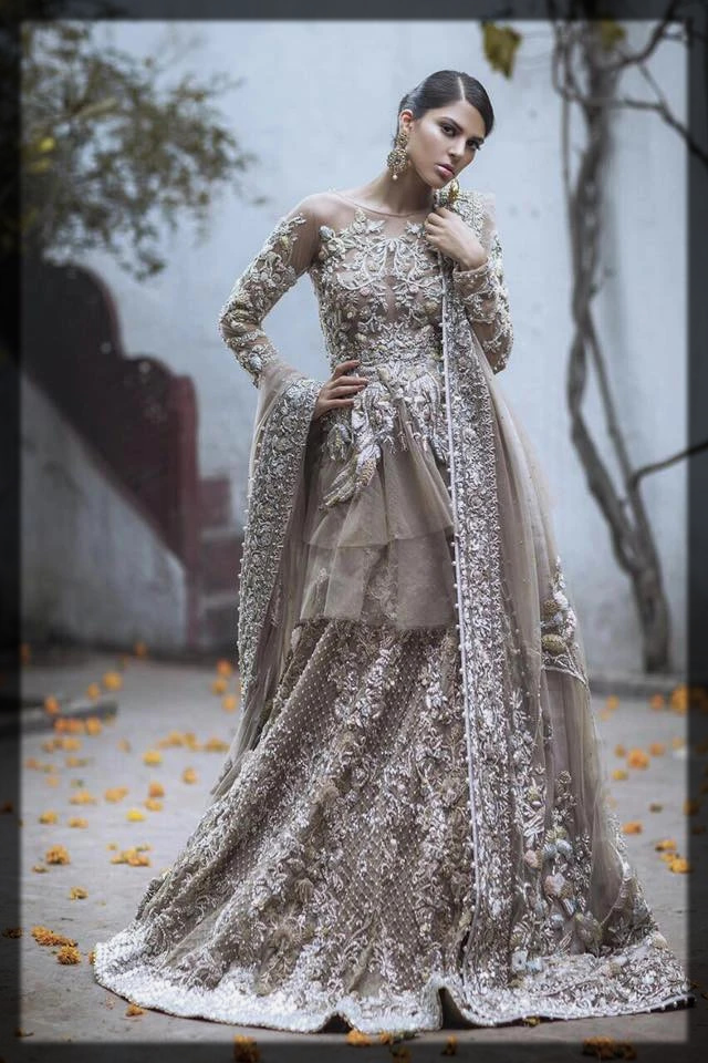 Light-Shaded Beige & Silver Gold Organza Outfit