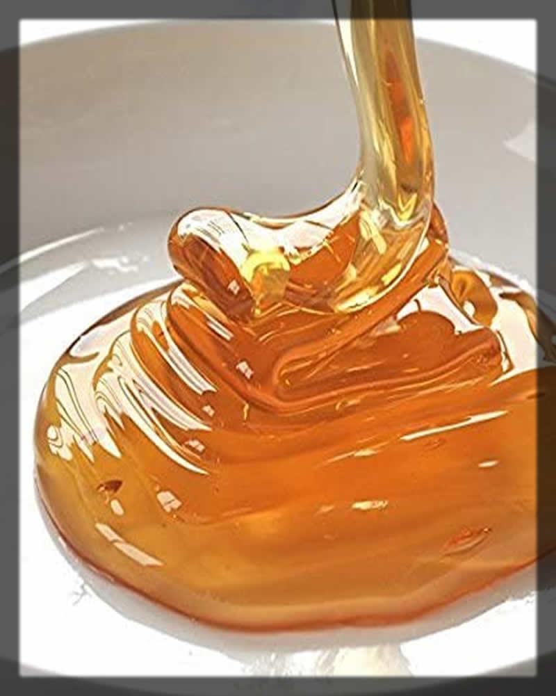 organic honey for lips