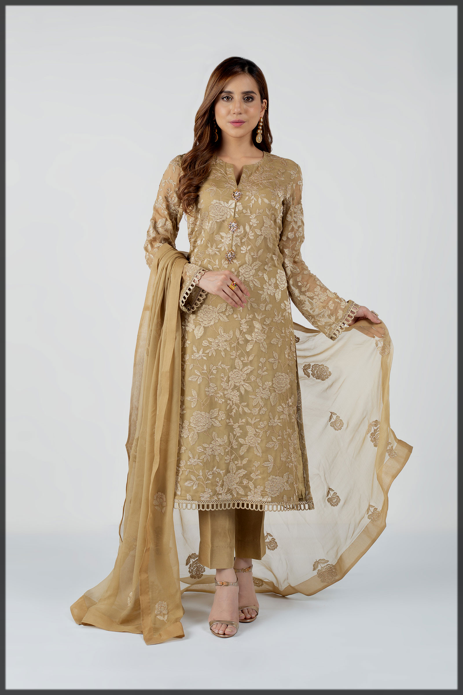 Embroidered Chiffon outfit for winter parties