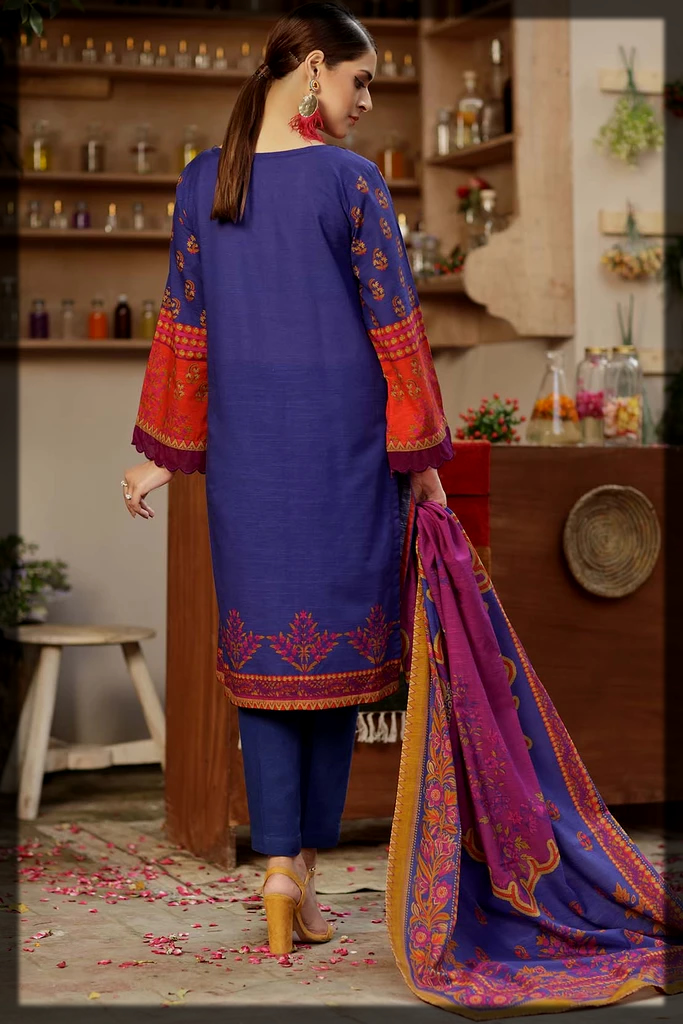 classy warda winter collection for women