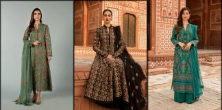 Bareeze Winter Collection 2021 with Price - Unstitched Dresses and Shawls