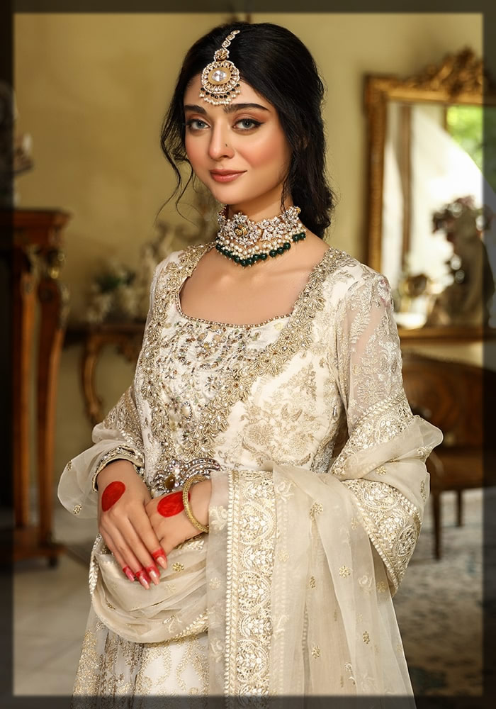 chiffon and organza embroidered suit