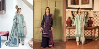 Rang Rasiya Winter Collection 2022 - Unstitched Linen Dresses with Prices
